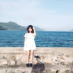 Hà Thành Phong trên LOZI.vn