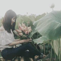 Chi Trần trên LOZI.vn