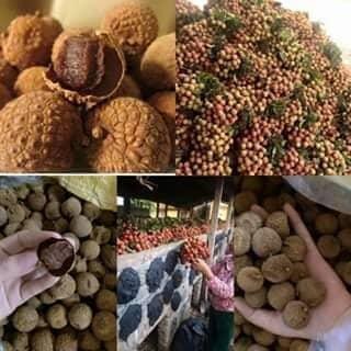 Vải thiều sấy khô của mahakio tại Hà Tĩnh - 2355573