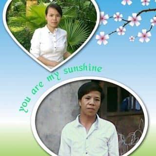 Vật dụng trang trí của d9aw1 tại Hùng Vương,  Tân Bình, Thị Xã Đồng Xoài, Bình Phước - 1049585