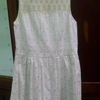 Váy của bacham174 tại Kon Tum - 2192061
