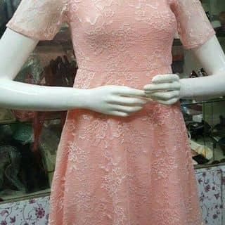 Váy ren của thokinhcan tại Ninh Bình - 2658597