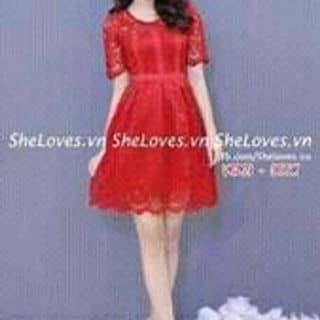 Váy ren của muangau8 tại Lý Thường Kiệt, Thành Phố Đồng Hới, Quảng Bình - 1456854