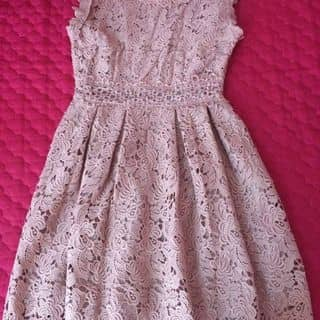 Váy ren cao cấp khoá đồng của daynganhaminhanhcodonlangtu tại Thanh Hóa - 3323373