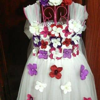 Váy tutu của vangmua tại Bắc Kạn - 846134
