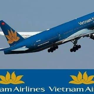 Vé  may bay giá  rẻ của totoan6 tại Shop online, Huyện Quỳnh Lưu, Nghệ An - 2809542
