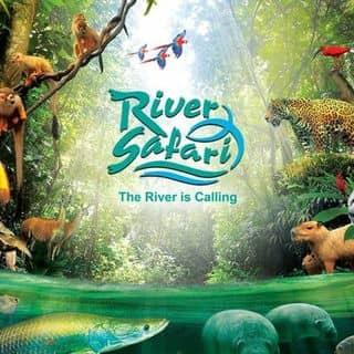 Vé River Safari Singapore Giá Rẻ của chaule2303 tại Hồ Chí Minh - 2001933