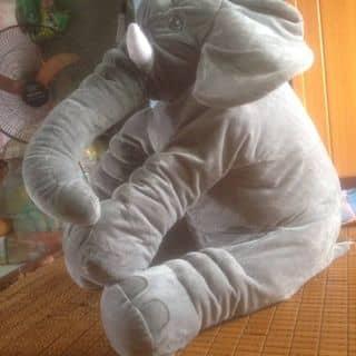 voi của dinhanh201193 tại Hòa Bình - 1416197
