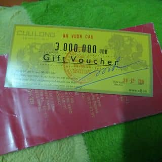 Voucher mua trang sức cửu long của icethuy tại Hồ Chí Minh - 2264710