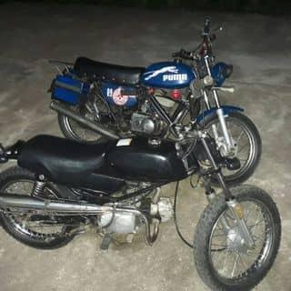 win 100cc + minsk 125cc của hoan89mc tại Mai Châu, Huyện Mai Châu, Hòa Bình - 2122055