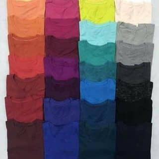 Xả hàng áo thun trơn của transoi tại Đà Nẵng - 2671703