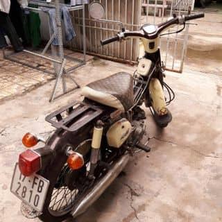 Xe cổ huyền thoại Cub79 của onlinecongay tại Hồ Chí Minh - 2533952