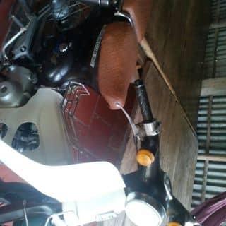 Xe cúp 50 của voduy50 tại Cà Mau - 2739855