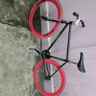 Xe đạp của nhukhanh33 tại Shop online, Quận Tân Phú, Hồ Chí Minh - 3737545