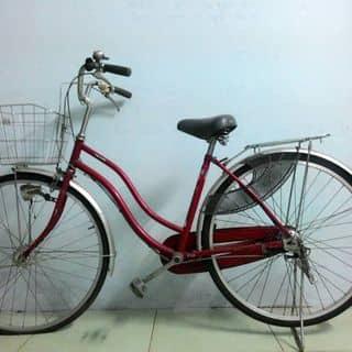 Xe đạp của mynga6 tại Đắk Lắk - 767198