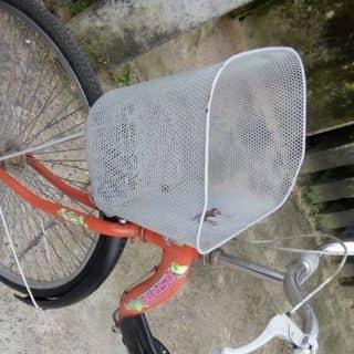 Xe đạp của trivan11 tại Thành Phố Tuy Hòa, Phú Yên - 2187133