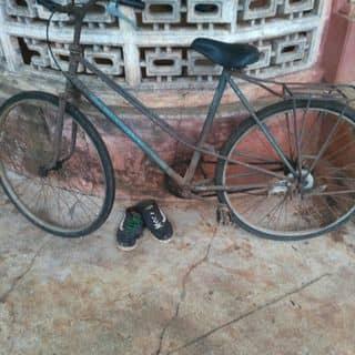 Xe đạp cũ của riksieungoan tại 6 Nguyễn Viết Xuân - Tp Bmt - Daklak, Thành Phố Buôn Ma Thuột, Đắk Lắk - 2181309