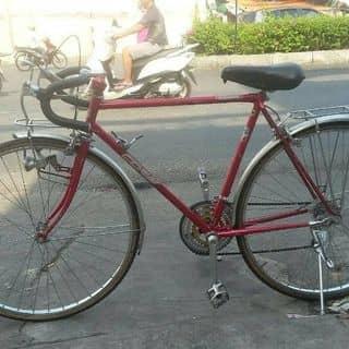 Xe đạp cuộc cổ điển CORE (Japan) của kiena2001 tại Quảng Ngãi - 3097687
