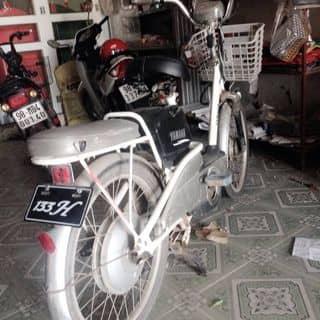 xe đạp điện giá rẻ của huudat18 tại Hải Dương - 2013039