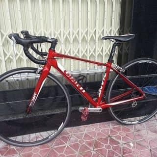 Xe đạp đua Giant defy (hàng bãi Nhật) của kiena2000 tại 1001 Quang Trung, Nghĩa Chánh, Thành Phố Quảng Ngãi, Quảng Ngãi - 2913108