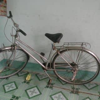 Xe đạp HS của lamnang tại Cần Thơ - 2210131