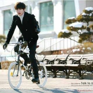Xe đạp kiểu hàn của transhys tại Shop online, Thị Xã Tân Châu, An Giang - 2872632
