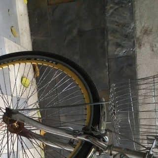 Xe Đạp Martin107 của cuongzero tại Hồ Chí Minh - 2029636