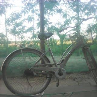 Xe đạp  mattin của xboynkangkeo tại Trà Vinh - 2914781