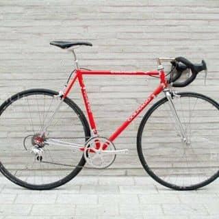 Xe đạp nhập của soccon1988 tại Hồ Chí Minh - 3036237