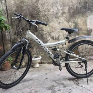 Xe đạp thể thao của thanhduygc tại Hồ Chí Minh - 2519568
