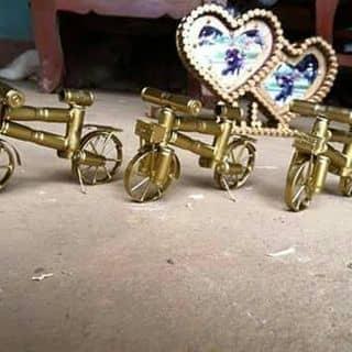 Xe đạp võ đạn của quynhhuu tại Nghệ An - 1085097