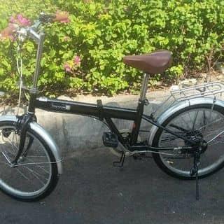 Xe đạp xếp Nhật (Bãi ) của kiena2001 tại Quảng Ngãi - 3097807