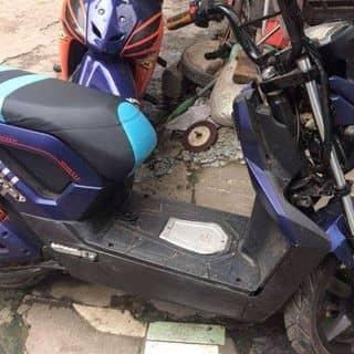 Xe điện của minhdanminhdan000 tại Hồ Chí Minh - 2900994