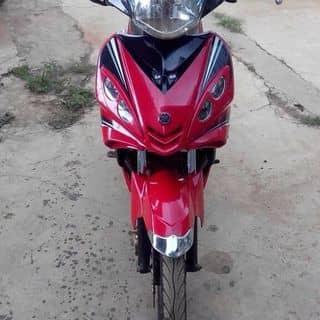 Xe exciter của sata tại Đắk Lắk - 2395855