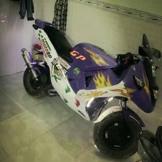Xe moto chế từ tayga atilaà của kevinh tại Hồ Chí Minh - 3184556