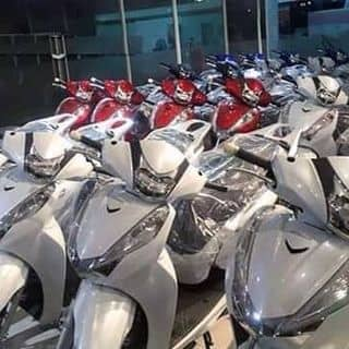 Xe sh  của skayron tại Hồ Chí Minh - 1431993