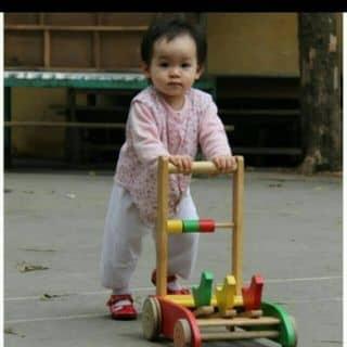 Xe tập đi của chuyenmyphamthai tại 0924.57.29.95, Thành Phố Bến Tre, Bến Tre - 2127532