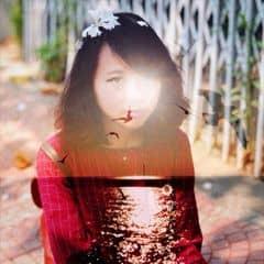 Nguyễn Ái Trinh trên LOZI.vn