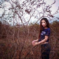 Thiên Kim Vũ trên LOZI.vn