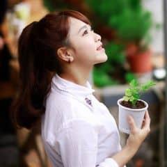 Thy Nguyễn trên LOZI.vn