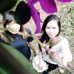 Qui Nguyen trên LOZI.vn