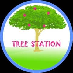 treestation trên LOZI.vn
