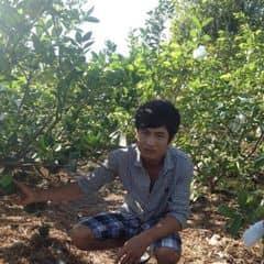 Huynh Cuong trên LOZI.vn