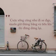 Nguyễn Ngọc Quỳnh Anh trên LOZI.vn