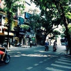 Hến ngố trên LOZI.vn